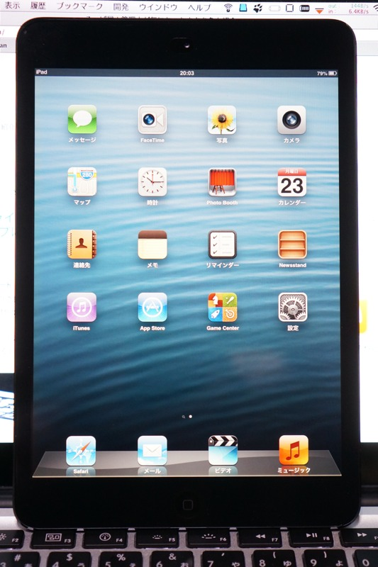 Ipadmini applestore 01